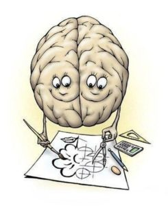 prawa i lewa połówka mózgu